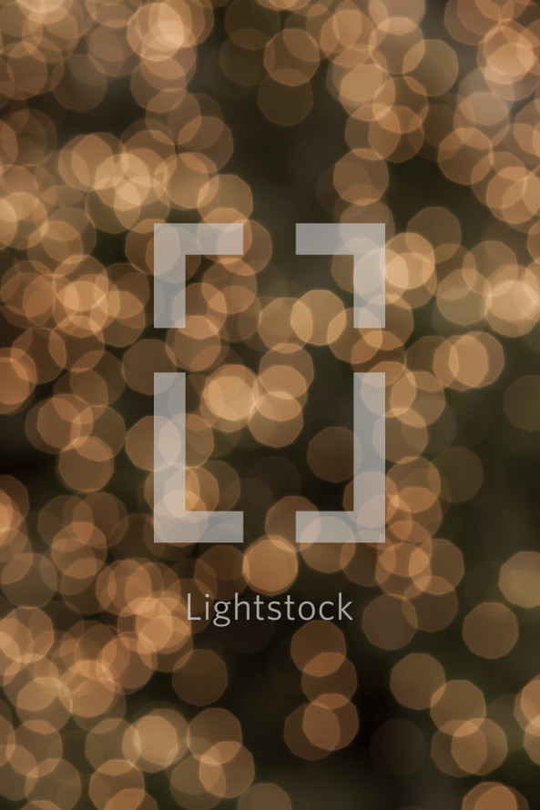bokeh white lights