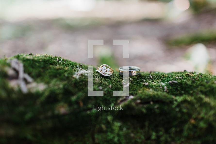 wedding rings on moss