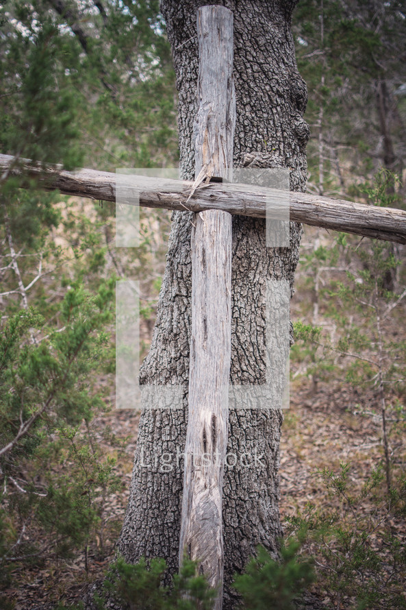 wood cross against a tree