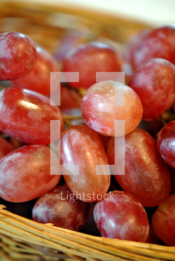Basket of grapes; closeup