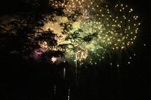 fireworks bursting over the trees