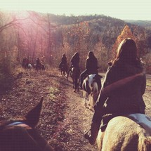 line of people riding horses along a trail
