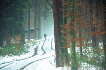 man and dog walking on a snowy trail through a forest
