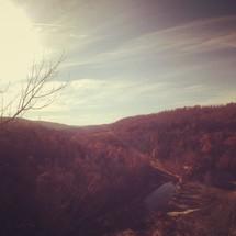 Trees on hilltops at sunrise.