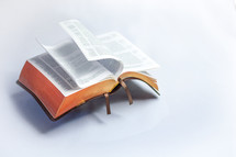 Floating Bible with flipping pages