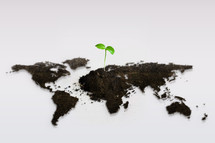 sprout in dirt and world map
