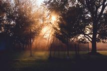 morning sunlight over farmland
