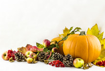 pumpkins, fall, leaves, pine cones, red berries, berries, autumn, fruit, apples