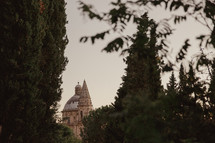 view of a dome on a church in Italy through the trees
