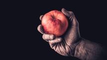 handing holding an apple