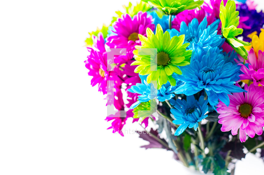 Bouquet of brightly colored flowers.