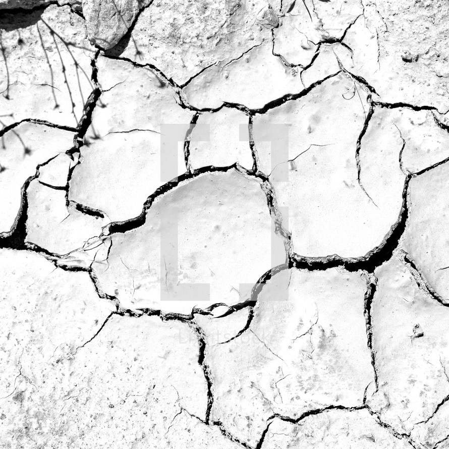 cracked clay earth