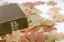 Holy Bible on fall leaves