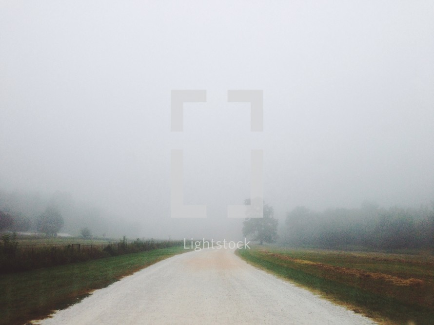 Fog on a dirt road with trees in the background.