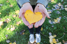 cupped hands holding a fall leaf