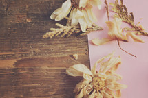 paper, wood and dried flower background