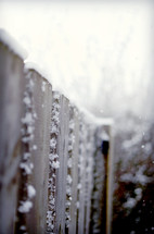 Snow-covered fence in winter