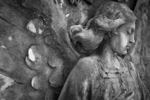 angel statute