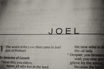 Open Bible in book of Joel