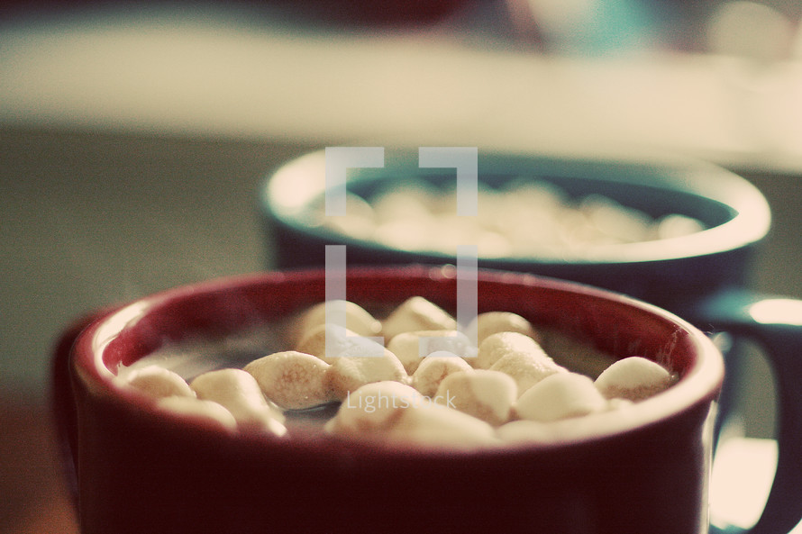 marshmallows in hot cocoa