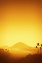 intense sunlight around an oasis