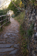 Stone pathway with a wooden railing next to a rock wall.