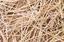 straw on the ground