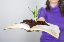 an aloe plant and soil on the pages of a Bible - God's word heals the soul