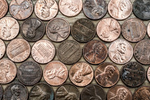 pennies lined up on a table