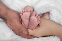 Mother and father's hands holding infant's feet.