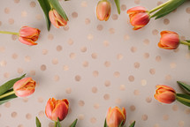 Tulips on a polka dotted, rose gold background