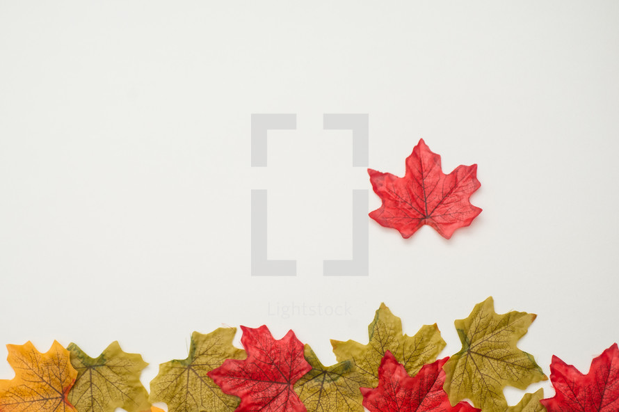 silk fall leaves border