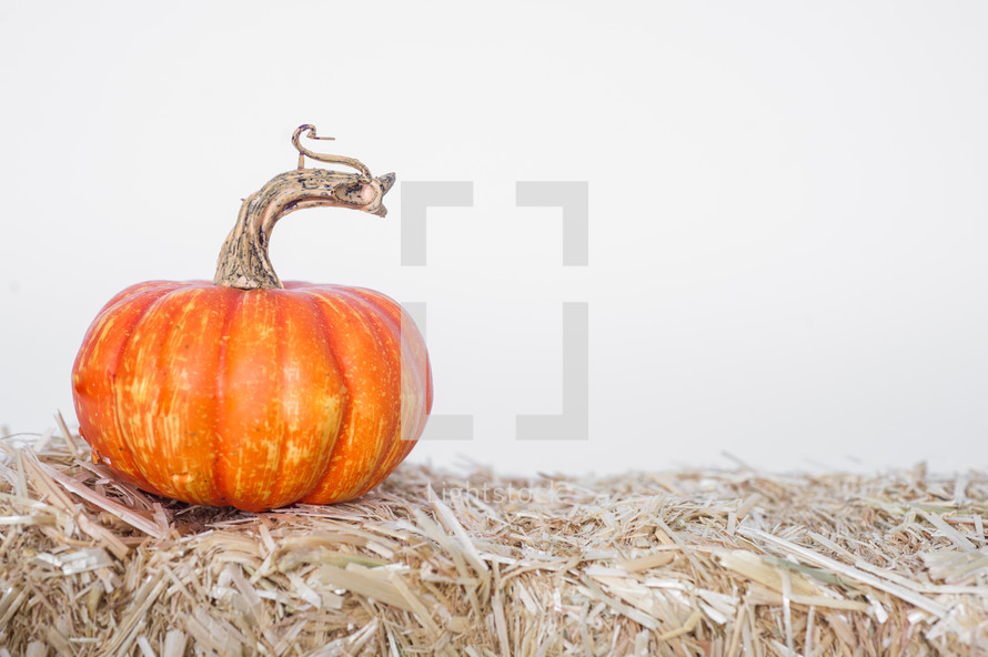 pumpkin on a hay stack