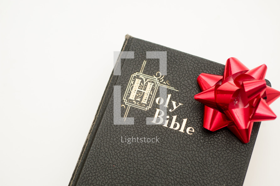 Holy Bible with a Christmas bow