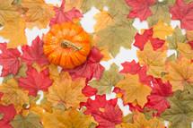 silk fall leaves pumpkin