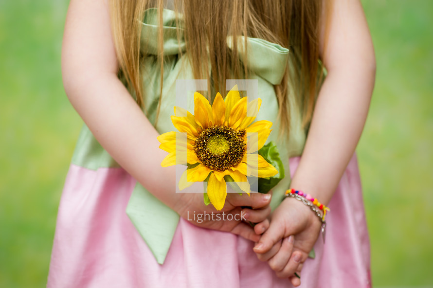 little girl holding a sunflower behind her back