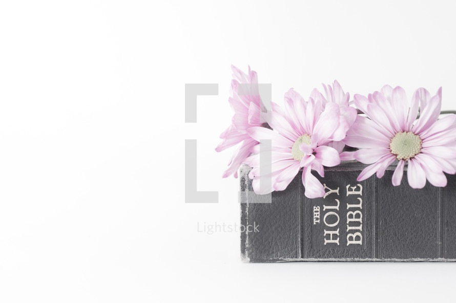 Flowers on top of a Bible.
