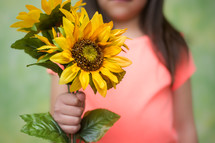 little girl holding sunflowers