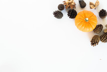 pine cones and pumpkins