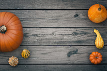 orange pumpkins and gourds