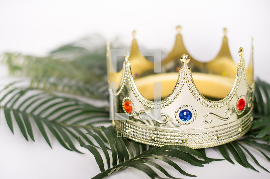 Crown on palm fronds