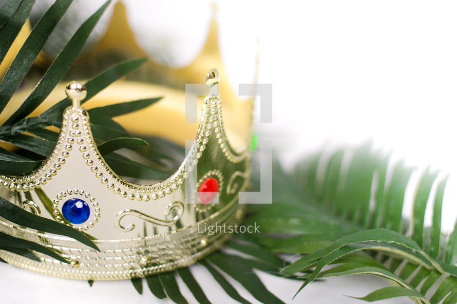 crown and palm frond