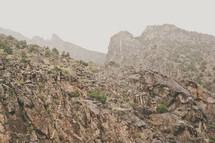A craggy mountainside.
