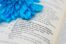 Blue flower on an open Bible.