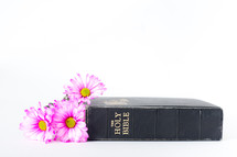 Bible next to pink flowers.