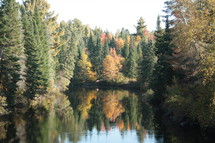 a lake in a fall forest