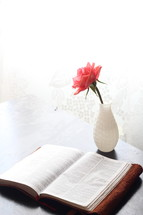 a pink rose in a white vase and an open Bible