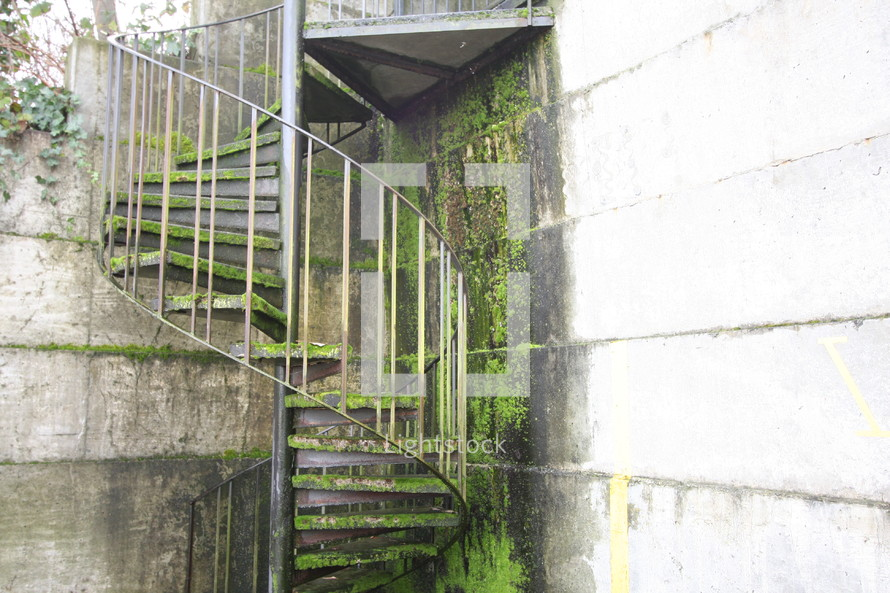 Winding outdoor staircase covered in moss