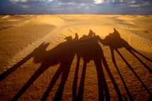 shadows of riders on camels