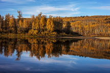 autumn trees reflection on lake water